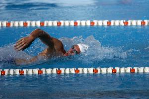 水泳フリー